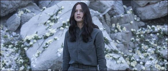 katniss-roses-cop