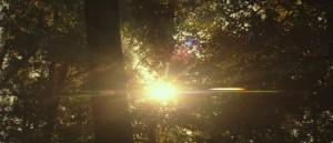 mockingjay-trailer (7)