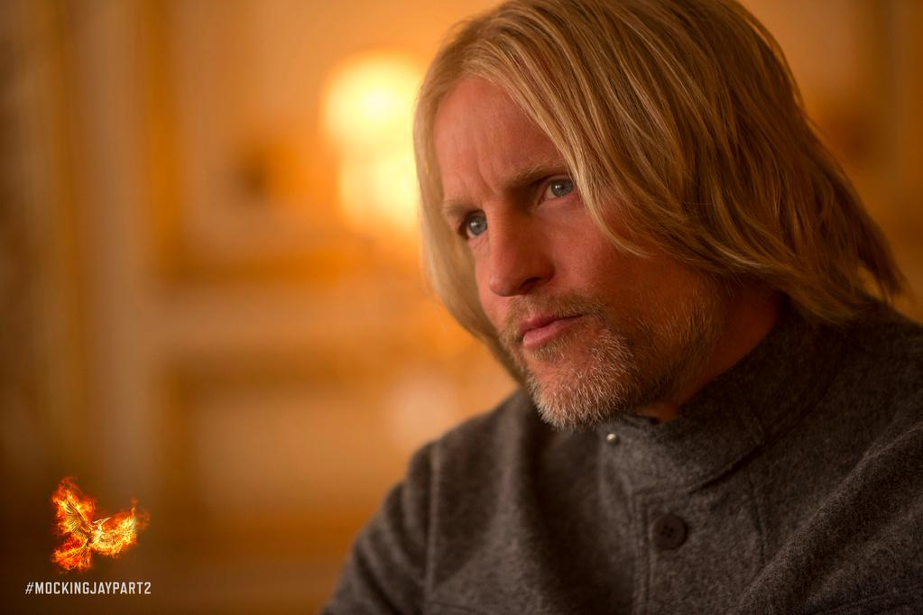haymitch-still-mockingjay (1)